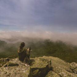 Trekking con il cane – FAQAttrezzatura Trekking