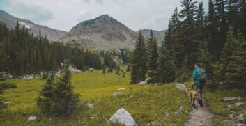 8 Consigli: fare trekking con il CaneAttrezzaturaTrekking.it