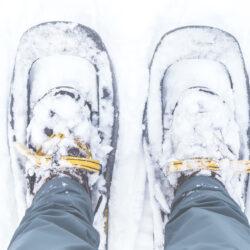 Scarpe per Ciaspole: le migliori 7 da usareAttrezzatura Trekking